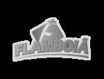 flamboia